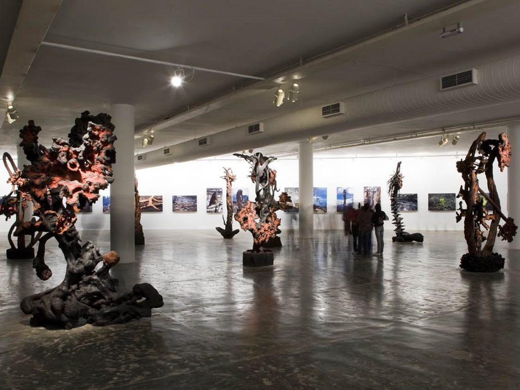 MAM 60 - Museu de Arte Moderna